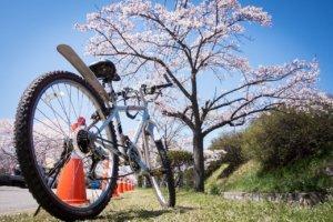 Frühjahrscheck für das Bike